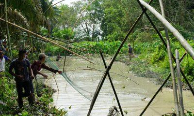 Bekarang, tradisi menangkap ikan di Desa Senaung Muarojambi